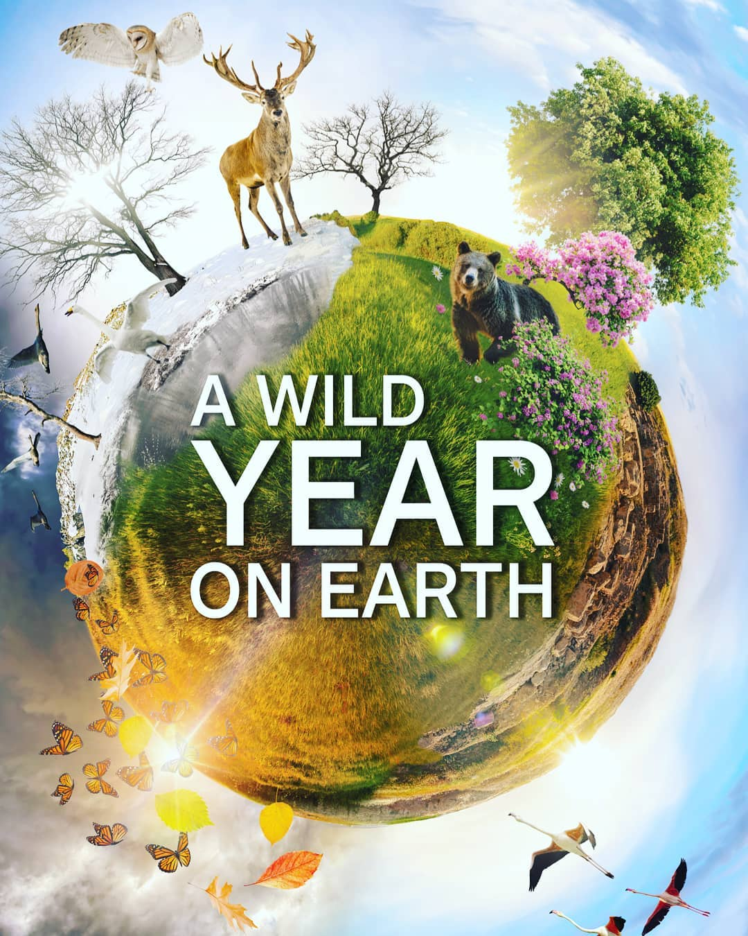 A Wild Year on Earth - Season 1